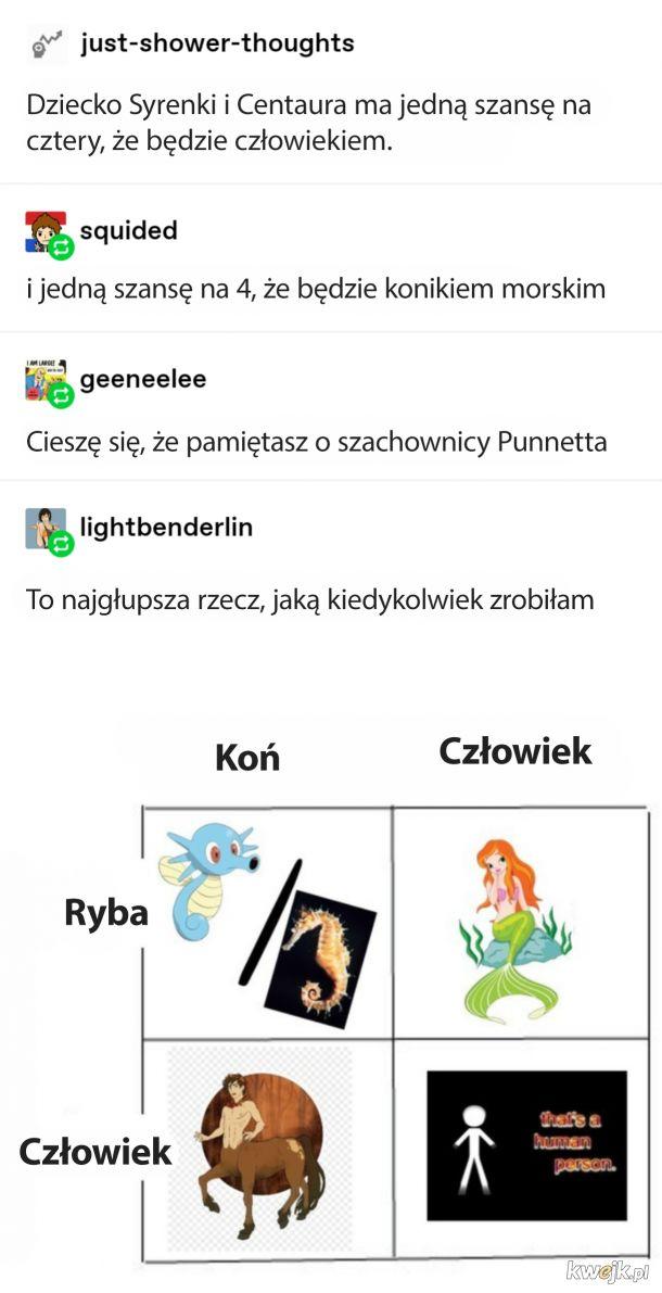 Pół koń, pół ryba