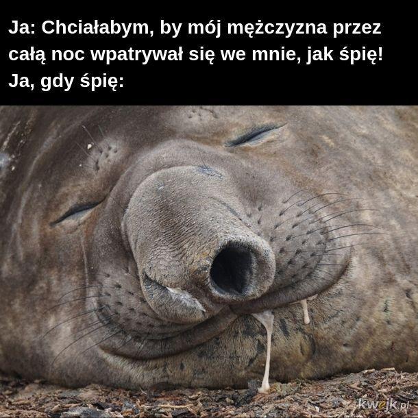 Ludzie, jak śpią, są obleśni