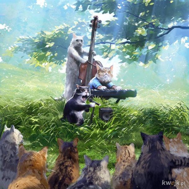 Kocia muzyka z Internetu