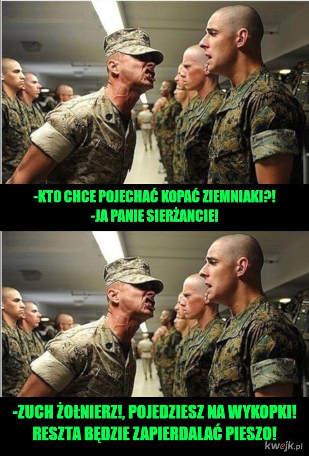 Brawo żołnierz