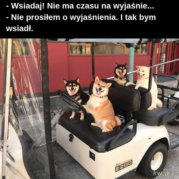 Piesełomobil