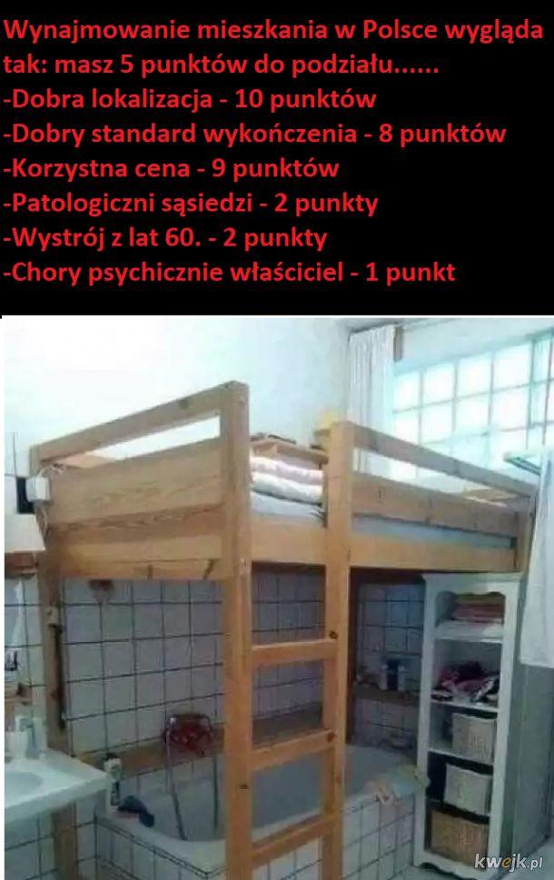 Wynajmowanie mieszkania/pokoju