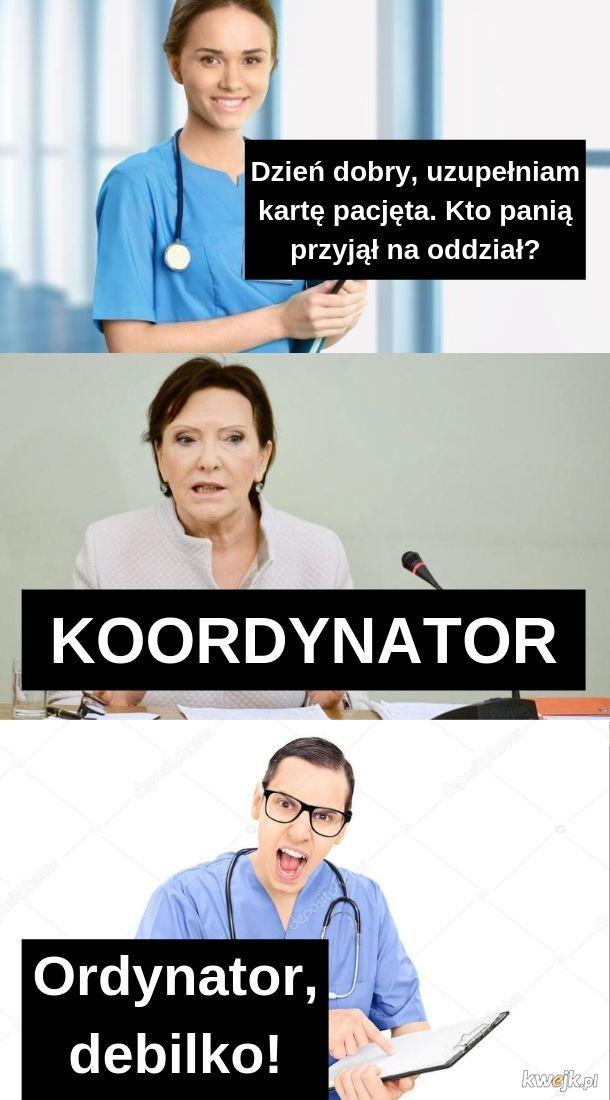 Ordynator