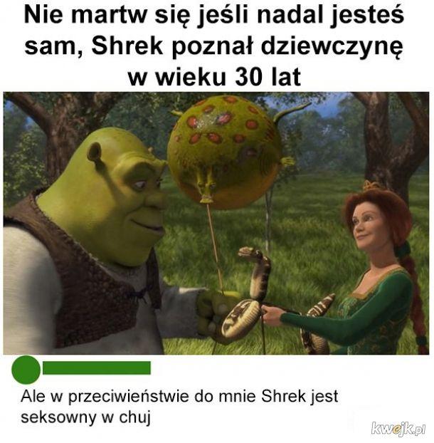 Nie martwcie się incele. Shrek is love, shrek is life