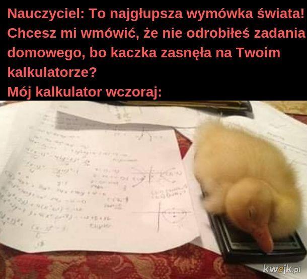 Nie można budzić śpiącej kaczuszki! Takie jest prawo!