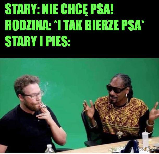 Mem dla wykształconych poliglotów