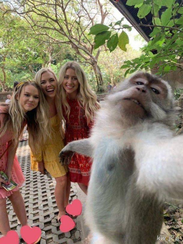 Bogaty Niemiec w Jastarni robi selfie