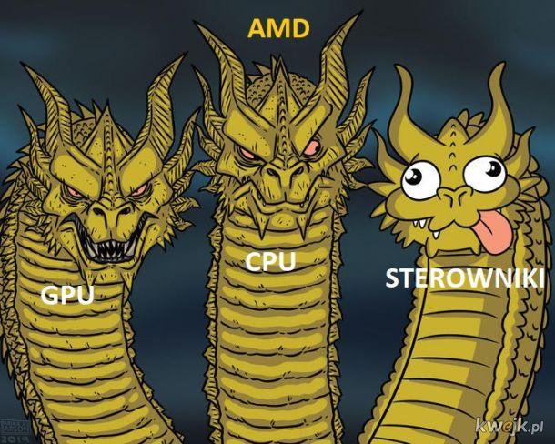 Polityka AMD