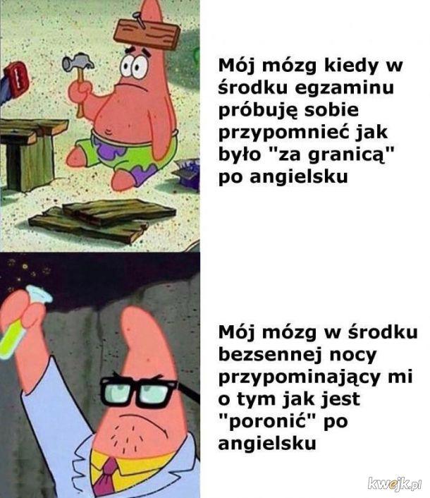 Mózgu why
