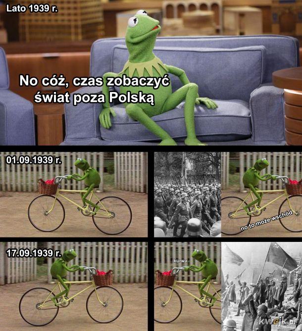 Kermit jako Polak podróżnik