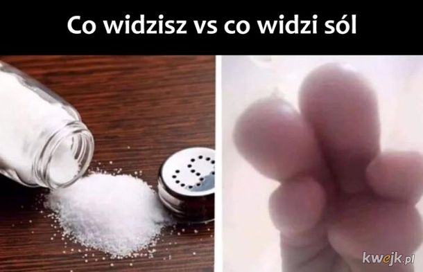 Co widzi sól