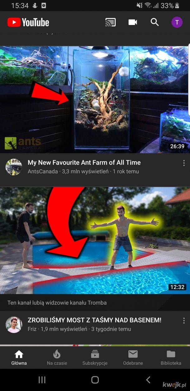 Podpowiedzi YouTube