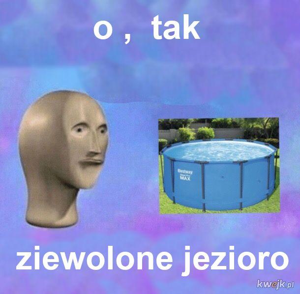 Danki memesy
