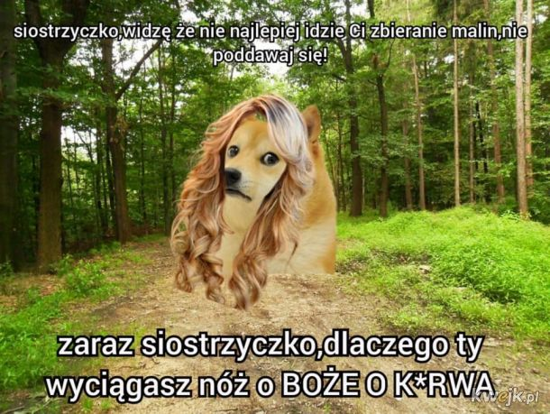 Balladyna jbc