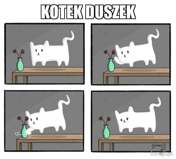 Przygody kotka który wykorzystał wszystkie życia