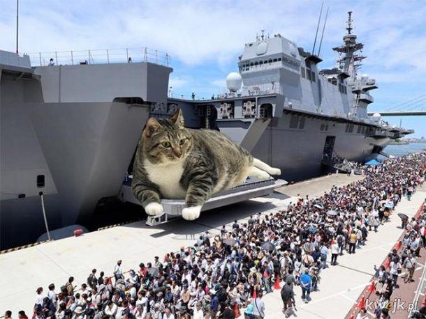 Militarne kitku