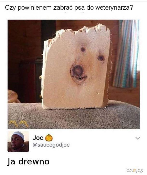 ja drewno
