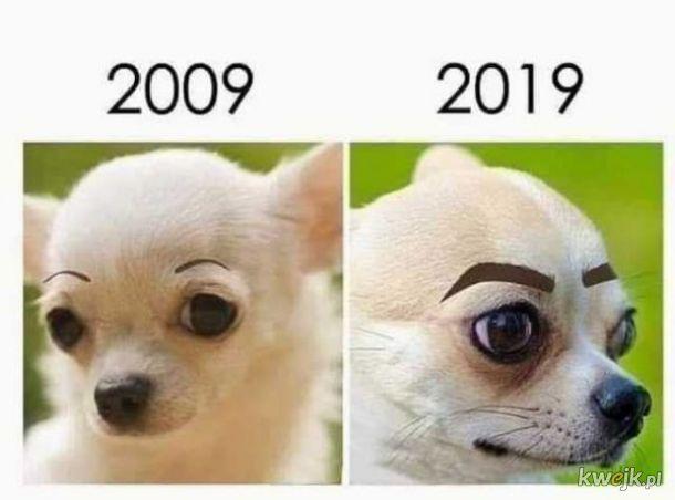Co będzie za rok