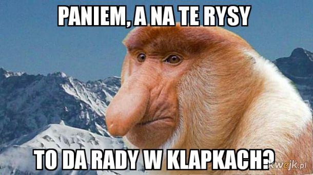 Janusz w Tatrach