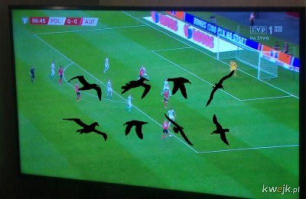 Memy po meczu Polska vs Austria, obrazek 6
