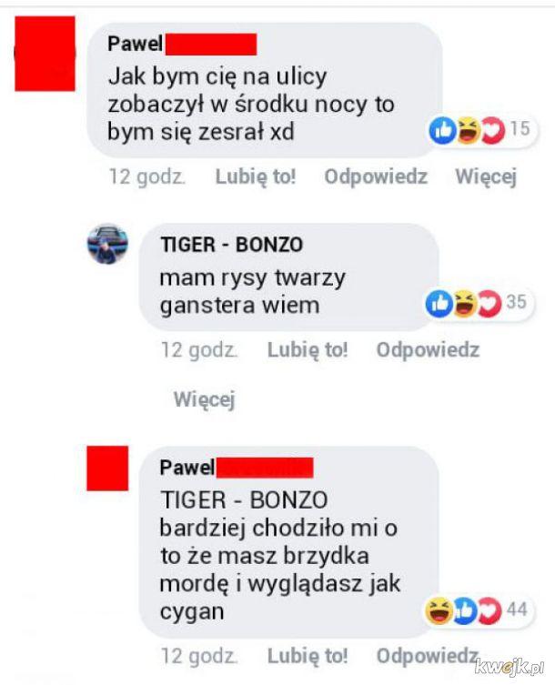 Tiger Bonzo