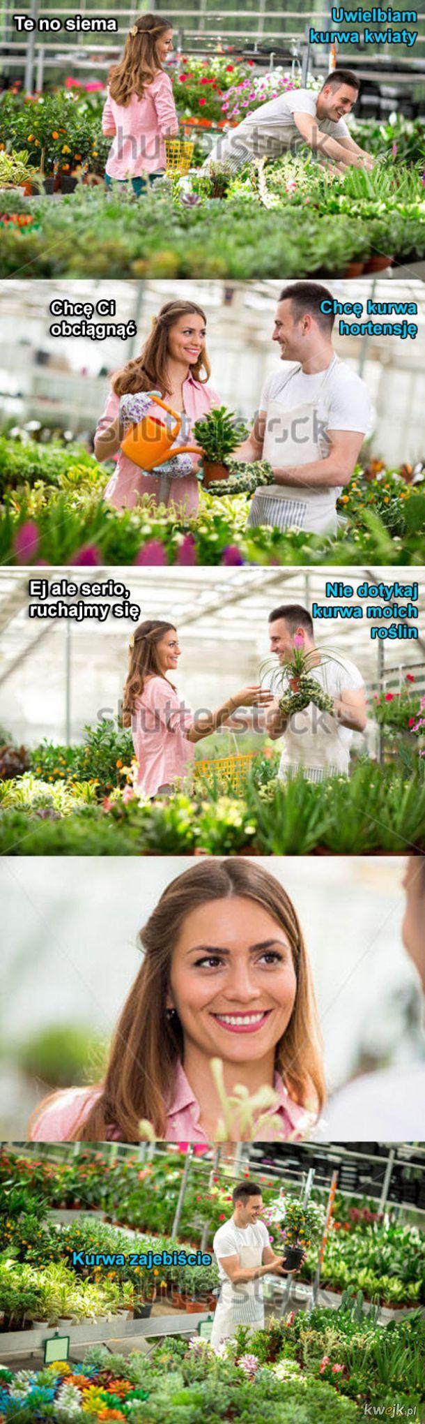 Ukochane kwiatki