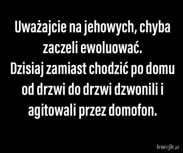 Jehovas witnesesess