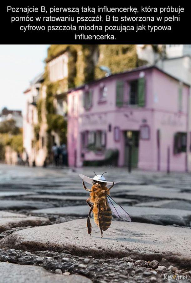 Pierwsza na świecie pszczoła-influencerka próbuje zebrać fundusze na ratowanie swojego gatunku