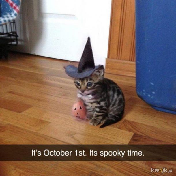 Październik