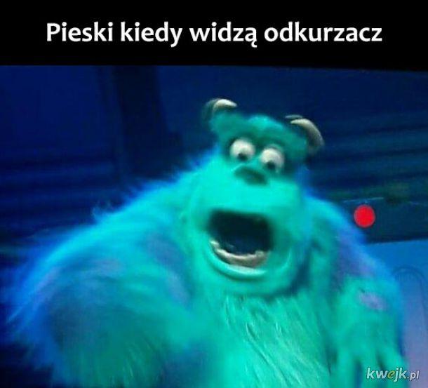 Pieski