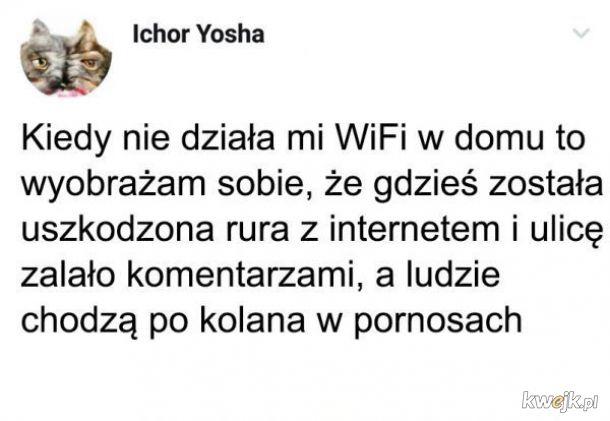 Kiedy nie działa WiFi