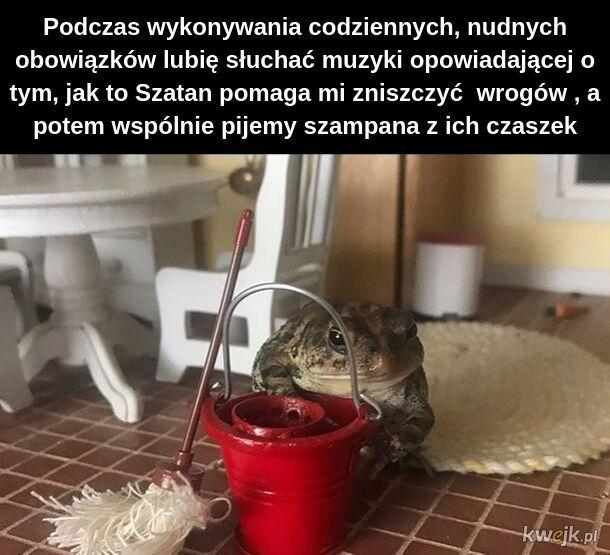 I'm a żaba-doll in my żaba-world