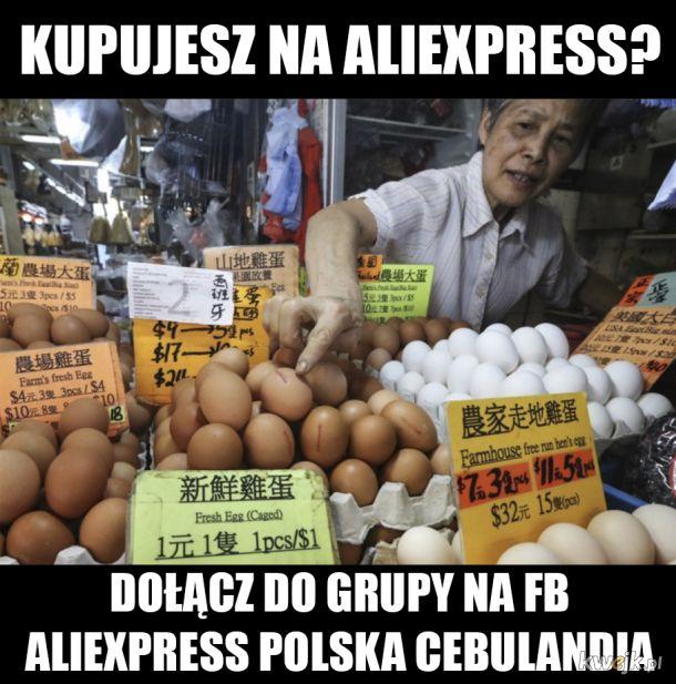 facebook.com/groups/Cebulandia/