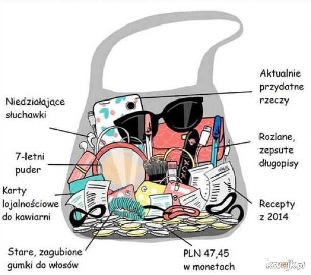 Anatomia torebki