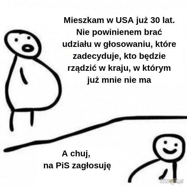 Polonia w USA