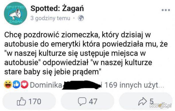 Ziomeczek