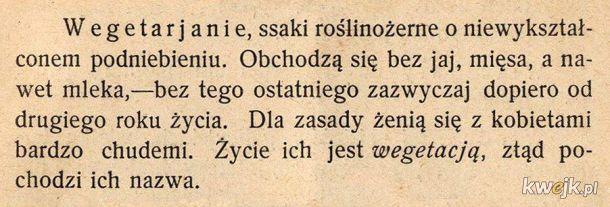 Definicja wegetarian z 1905 roku. Kazimierza Bartoszewicza