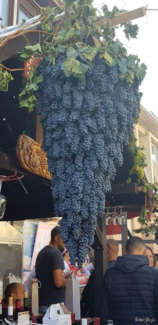 Winogron w kształcie winogrona