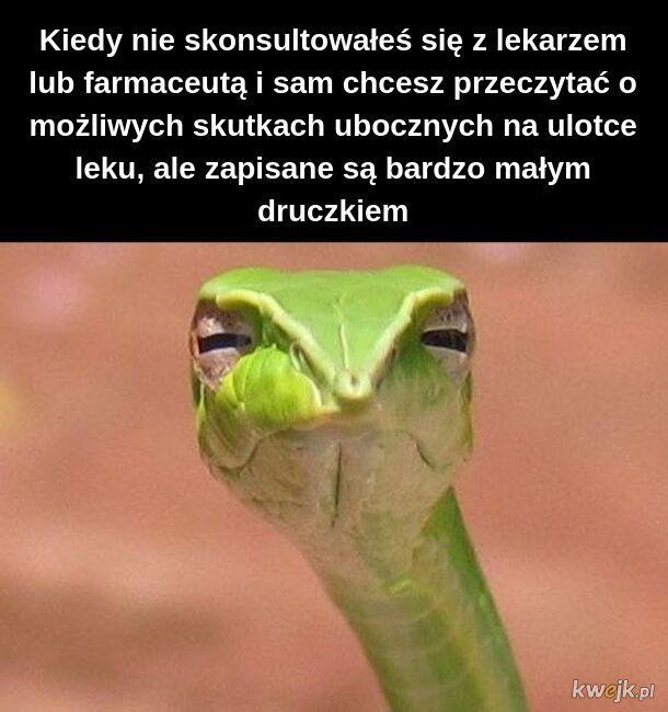 Kolejnym problemem jest to, że to wąż i nie umie czytać