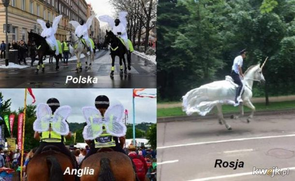 Policja w różnych krajach