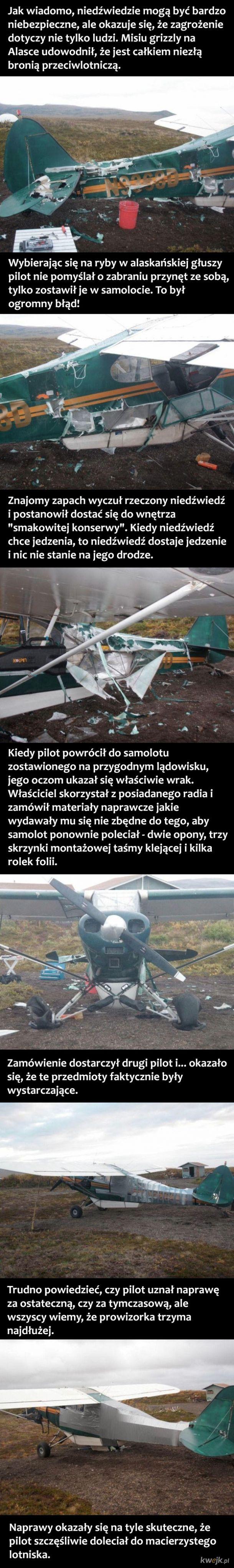 Taśma klejąca ratuje samolot zniszczony przez niedźwiedzia