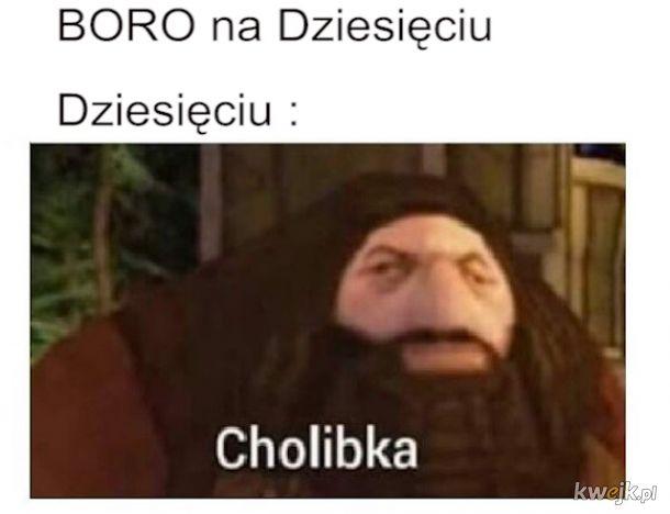 Boro na Dziesięciu Cholbika Hagrid mem