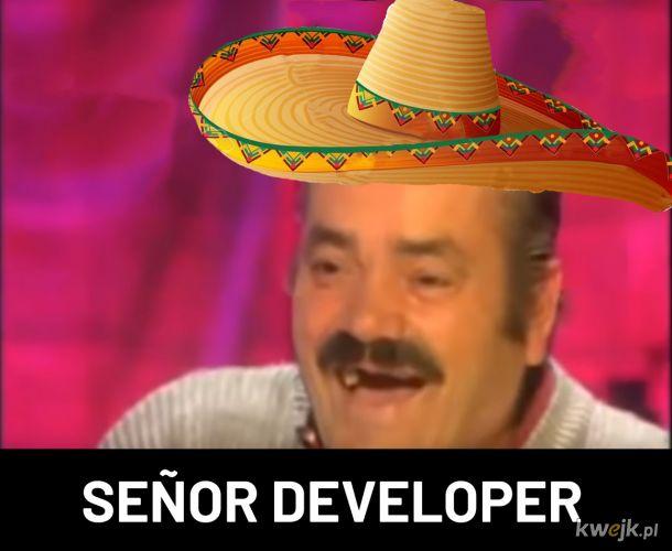 Senor developer