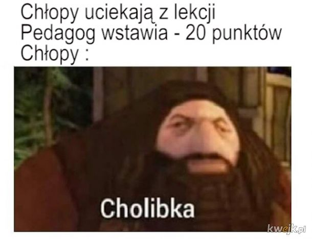 Ucieczka Z lekcji Mem Hagrid Cholibka