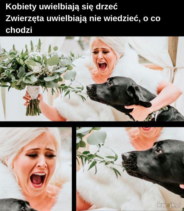 Kobiety i zwierzęta