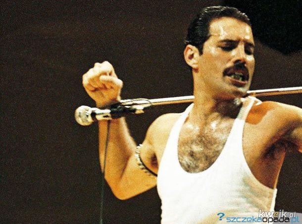 24.11.1991  zmarł Freddie Mercury-Lider i wokalista zespołu Queen.