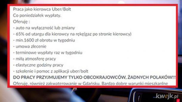 Ogłoszenie o pracę w Gdańsku
