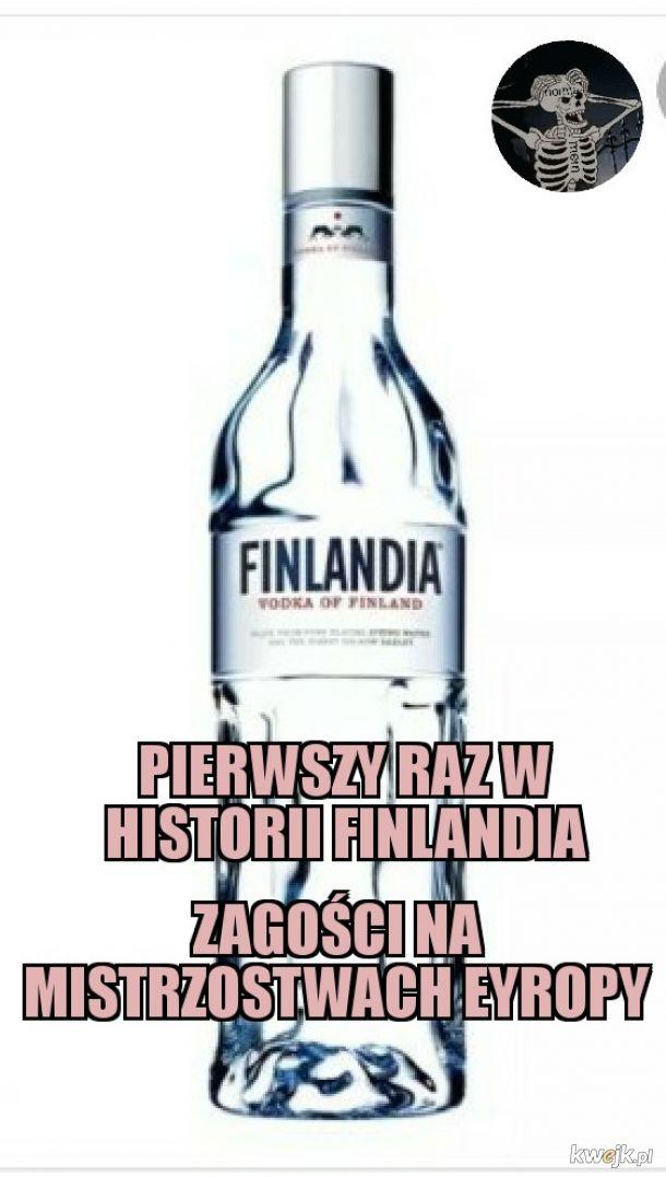 Finlandia w ME