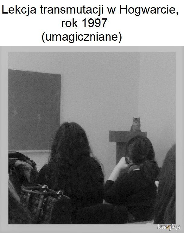 Tytuł