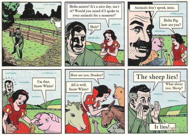 Owca kłamie!